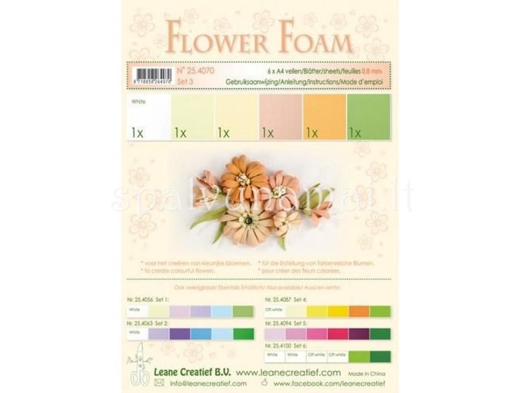 """EVA guma gėlėms """"Flower Foam: Salmon"""", 6vnt."""