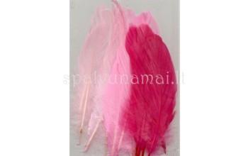 """Dažytos plunksnos """"Feathers Pink Mix"""", 15vnt."""