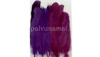 "Dažytos plunksnos ""Feathers Purple Mix"", 15vnt."