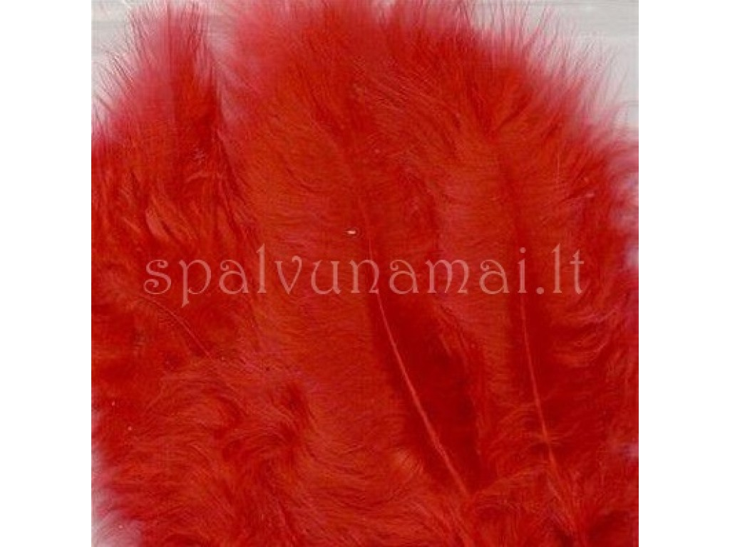 "Dažytos plunksnos ""Feathers Marabou red"", 15vnt."
