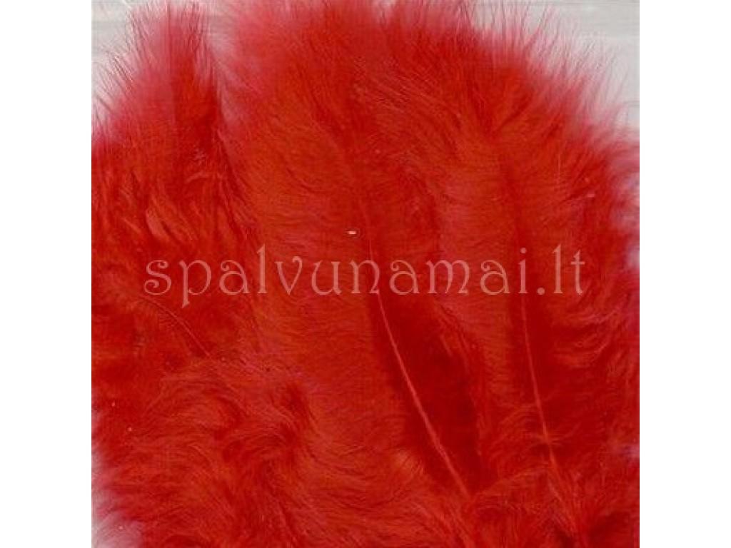 "Dažytos plunksnos ""Feathers Marabou red"", 15vnt."