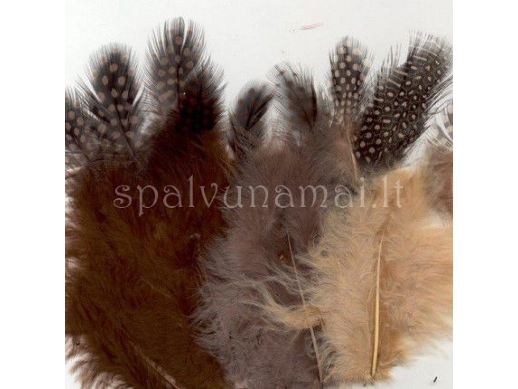 """Dažytos plunksnos """"Feathers Marabou and Guinea mix earth"""", 18vnt."""