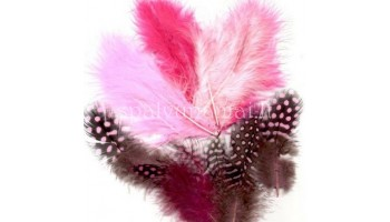 "Dažytos plunksnos ""Feathers Marabou and Guinea mix pink"", 18vnt."