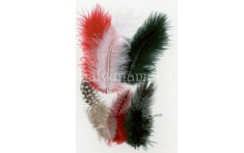 "Dažytos plunksnos ""Feathers Marabou and Guinea mix red black"", 18vnt."