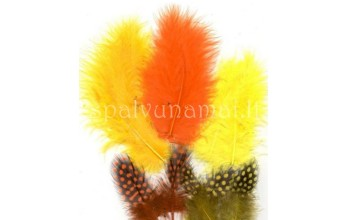 "Dažytos plunksnos ""Feathers Marabou and Guinea mix orange yellow"", 18vnt."