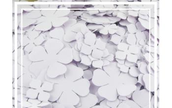EVA gumos gėlių žiedlapių ruošiniai, lilac (pakelyje 30 vnt)