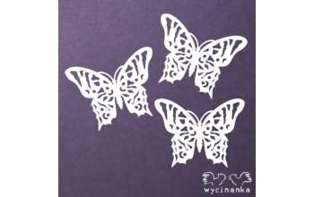 """Kartoninė formelė """"Summer dream - drugeliai"""""""