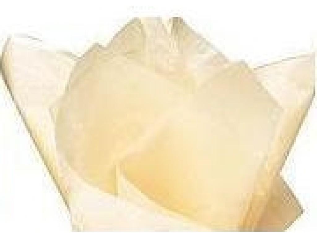 "Tissue šilko popierius ""Šampano / Champagne F005"", 25vnt."