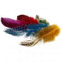 Dažytos perlinės vištos plunksnos, 3g