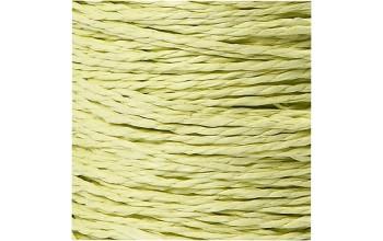 "Virvelė ""Paper Yarn Green"", 5m"