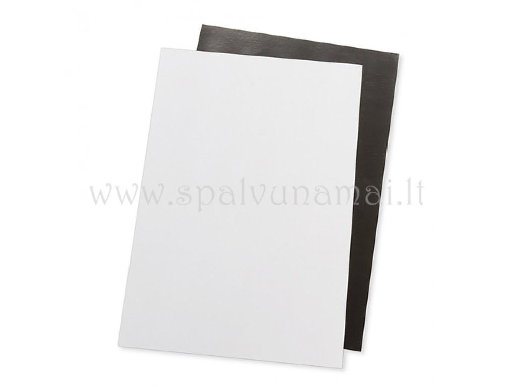 Magnetinis lakštas baltas, 30x21x0,01cm, 1vnt.