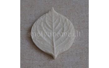 "Forma gėlėms iš foamirano ""Mould Small leaf"""
